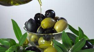 olives & olive oil 2